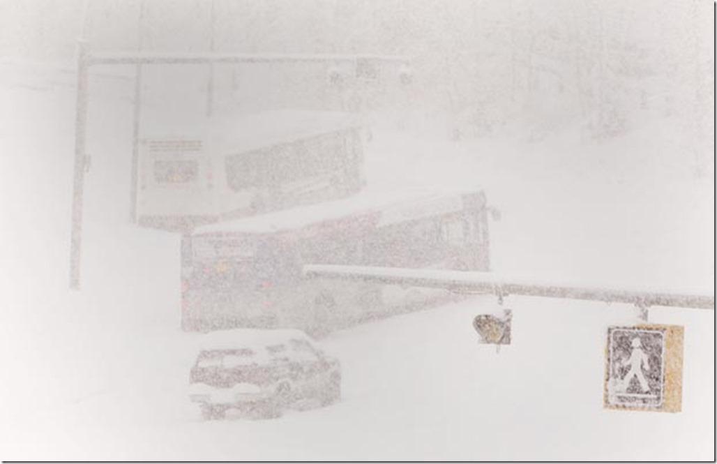 snow snow 365.jpg